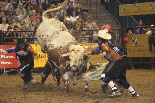 The Rodeo Photo That Took It All